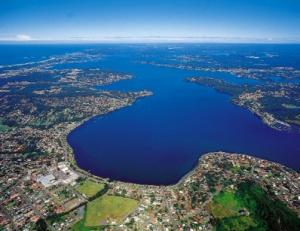 Pest Control Lake Macquarie NSW